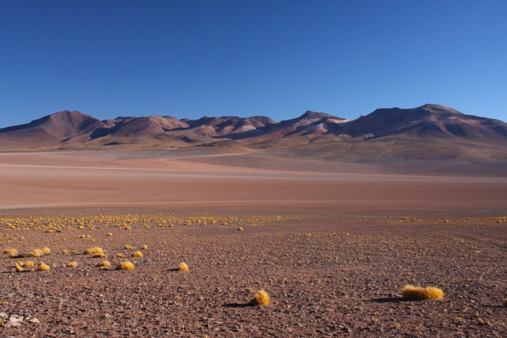 Landscape in the Bolivian South West