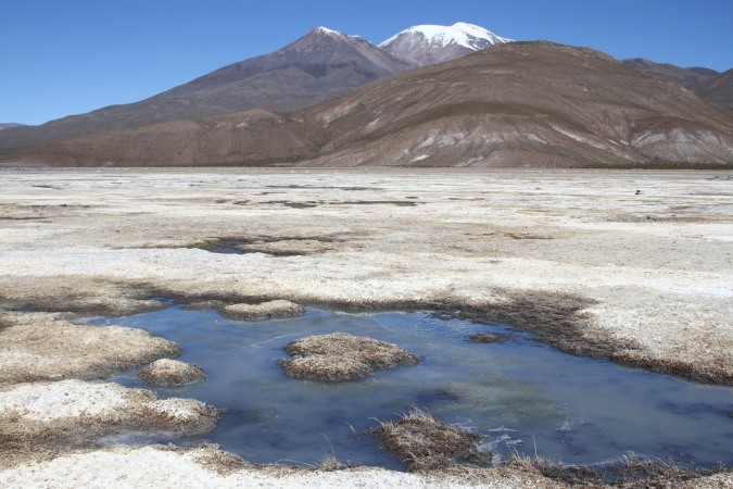 Salt marsh and mountains, Altiplano, Bolivia