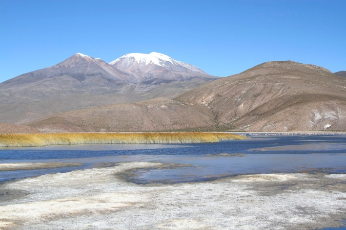 Flamingo lake, Altiplano Bolivia