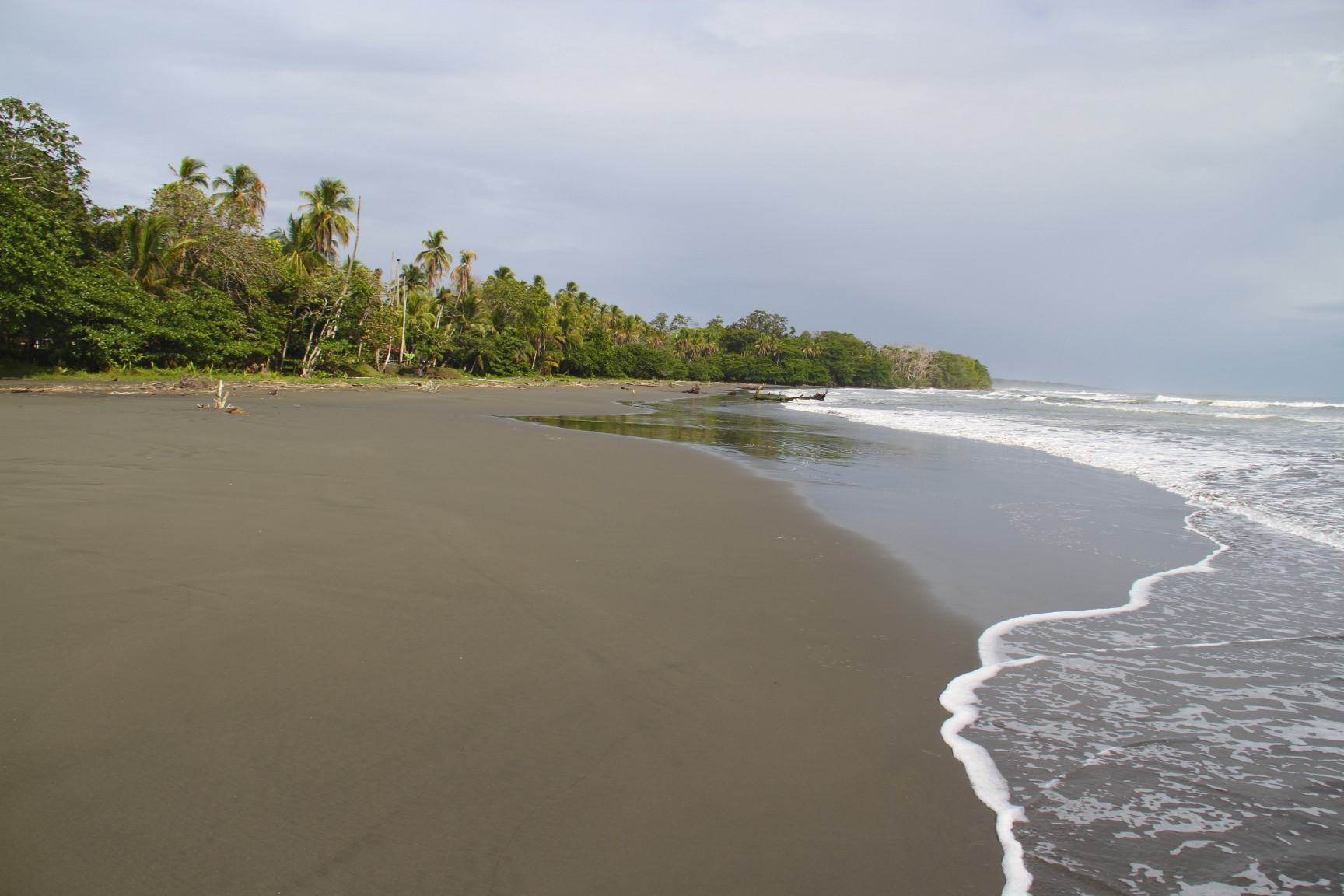 Weekly photo 2013 notesfromcamelidcountry for Black sand beaches costa rica