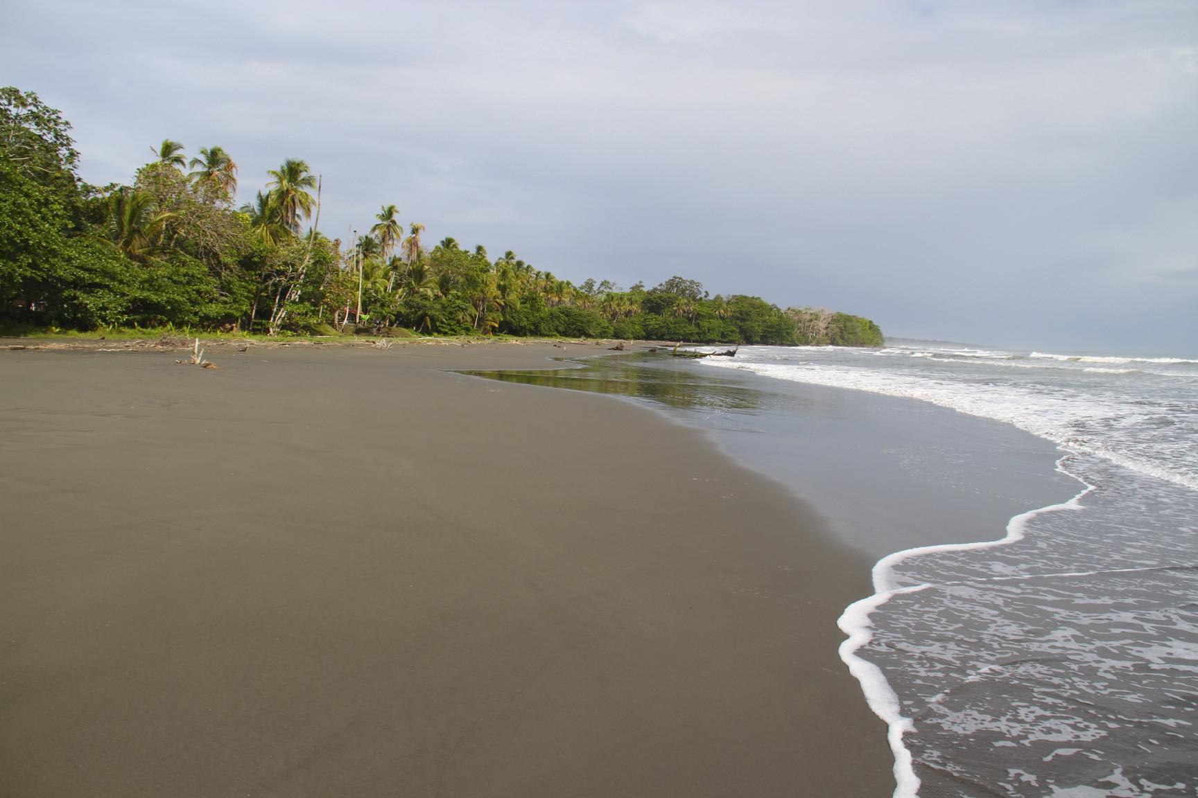 Black Sand Beach At Cahuita Costa Rica Notesfromcamelidcountry