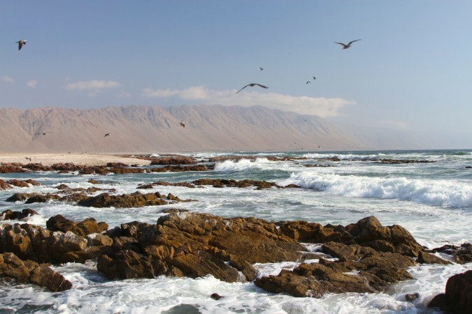 The wild Pacific coast of northern Chile