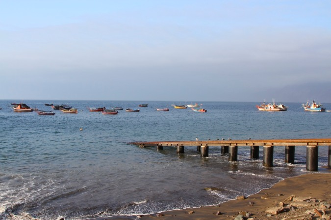 The fishing fleet at Taltal, Chile