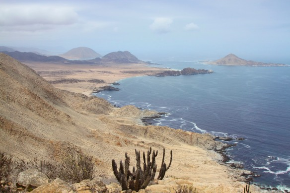 View down the coast, Parque Nacional Pan de Azucar, Chile