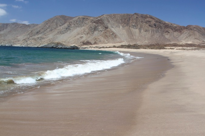The beach where we had lunch in the Parque Nacional Pan de Azucar, Chile