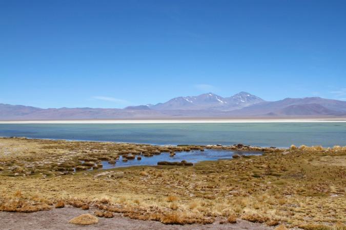 Laguna Santa Rosa, Parque Nacional Nevado de Tres Cruces, Chile