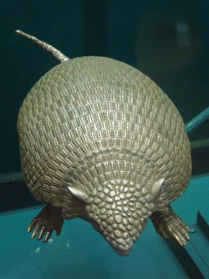 Armadillo made from Potosi silver, Casa de la Moneda, Bolivia