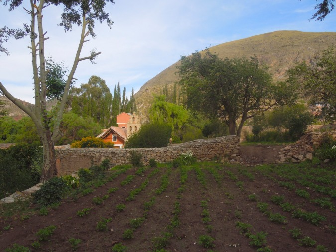 View from the grounds, Hacienda Cayara, Cayara, Bolivia