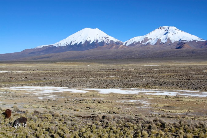 Vulcans Pomarape and Parinacota, Sajama National Park, Bolivia