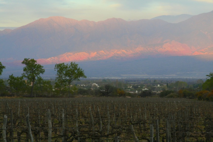 Wine Country Argentina Tours