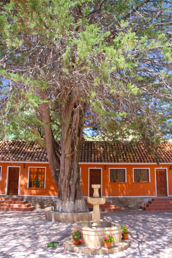 Hacienda Cayara, Potosi, Bolivia