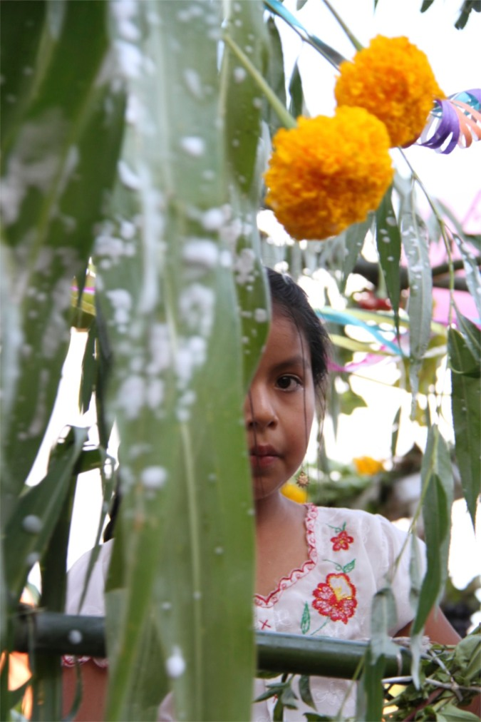 A young girl on a float, Carneval in San Lorenzo, Tarija, Bolivia