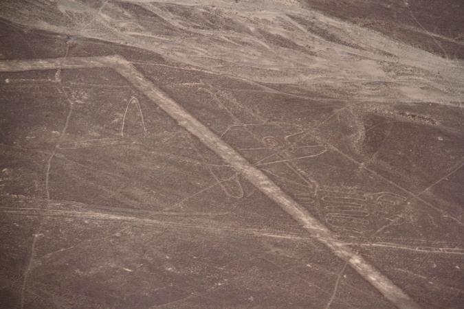 The Whale, Nazca Lines, Peru