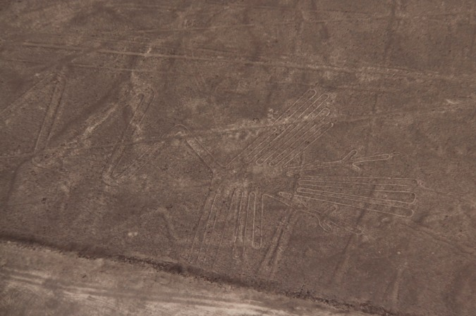 The 'Flamingo', Nazca, Peru