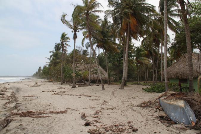 La Sirena Cabanas, Palomino, Caribbean, Colombia