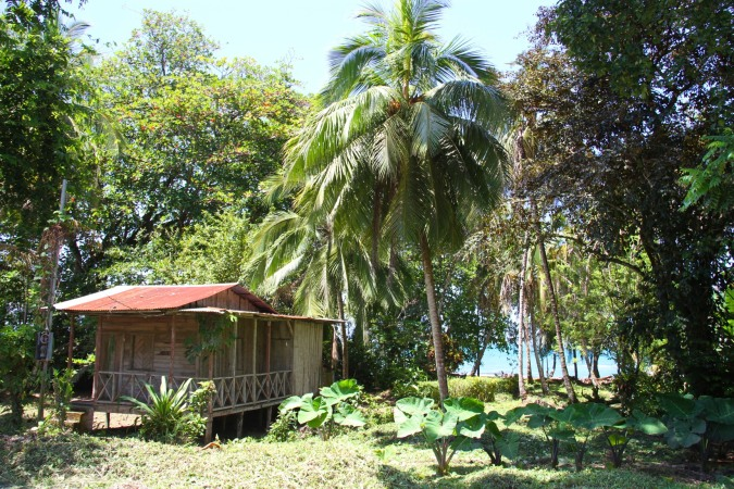 House in Cahuita, Costa Rica