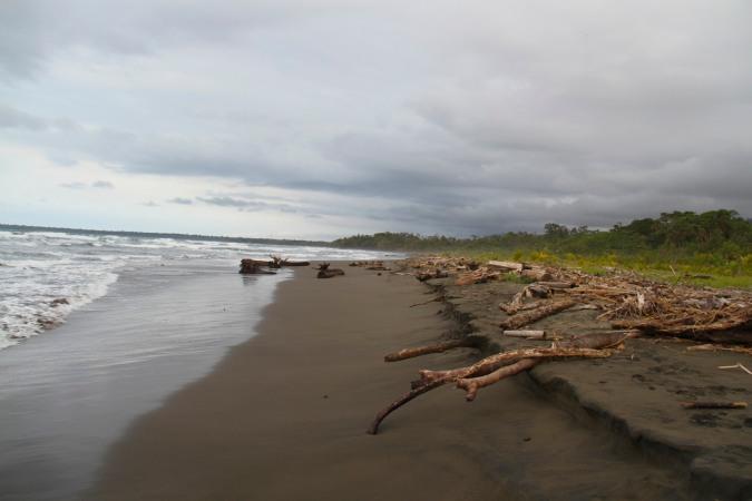 Playa Grande, Cahuita, Costa Rica