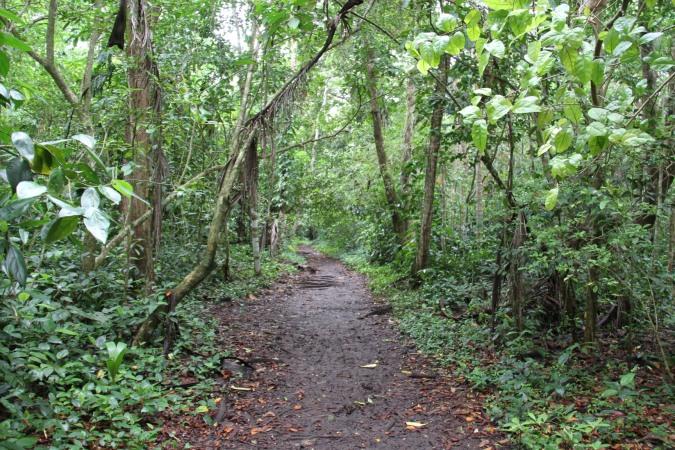 Parque Nacional Cahuita, Costa Rica