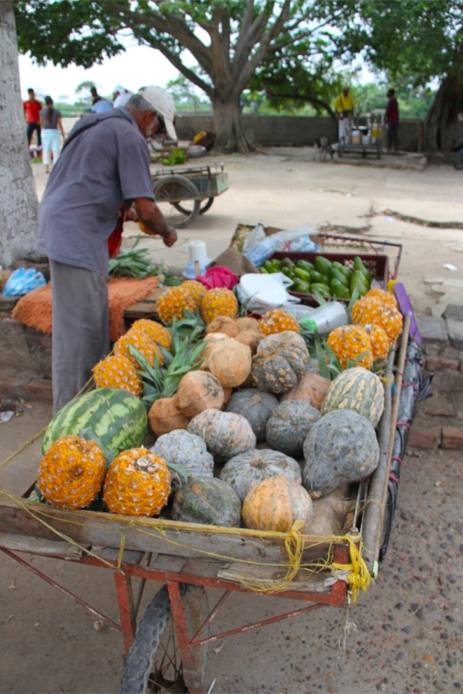 Fruit seller, Mompox, Colombia