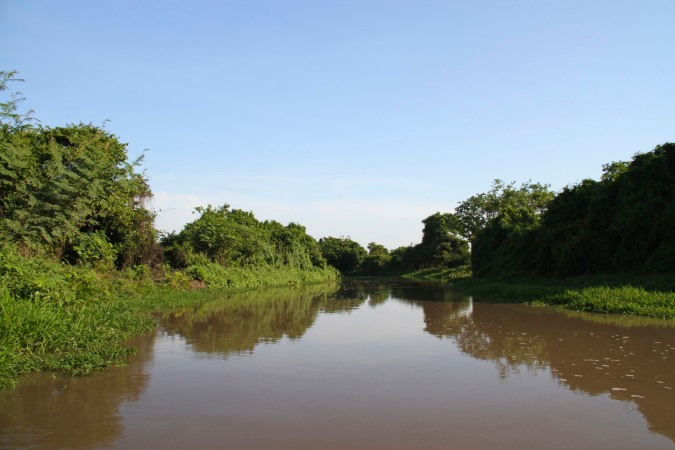Tributary of the Rio Magdalena, Colombia