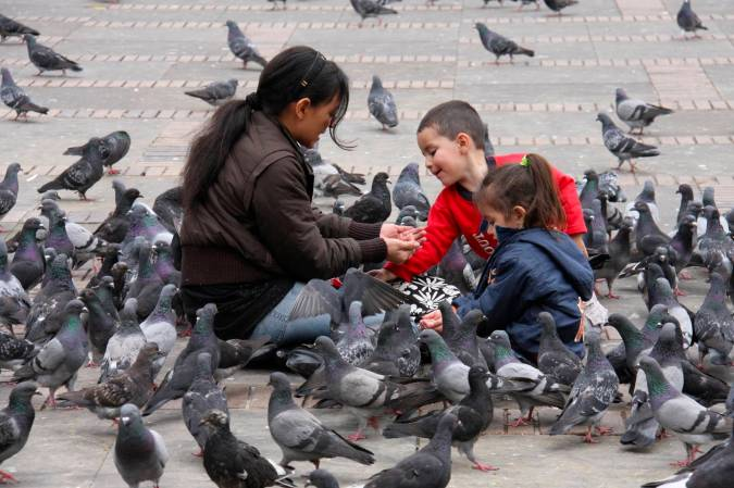 Feeding the pigeons in Plaza Bolivar, Bogota, Colombia