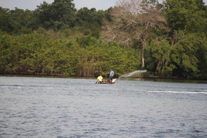 Fishing with a hand net, Pearl Lagoon, Nicaragua