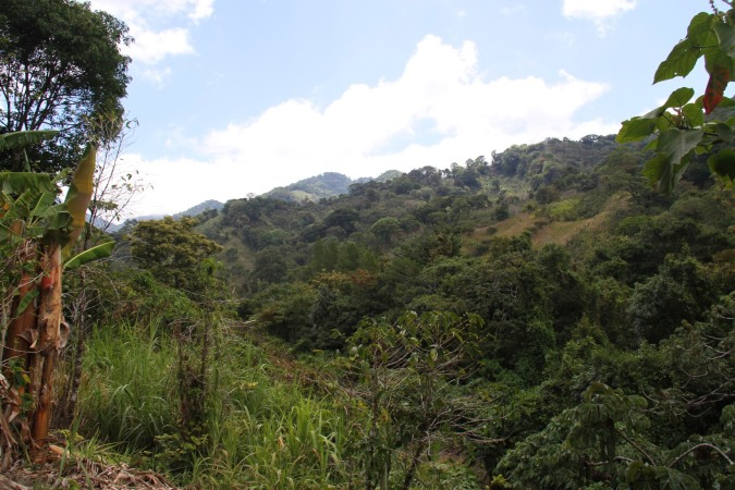 Countryside around Boquete, Panama
