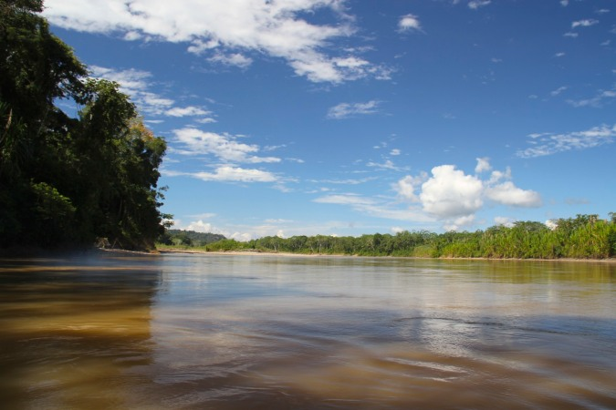 Rainforest and river, Madidi National Park, Bolivia