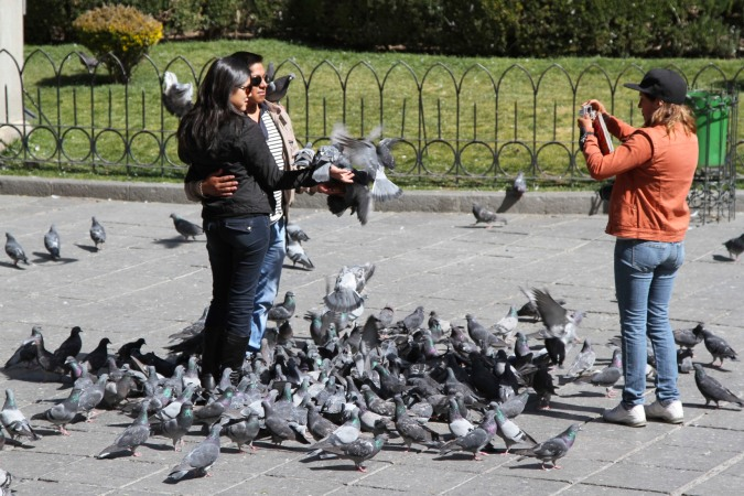 Posing for a photograph with pigeons in Plaza Murillo, La Paz, Bolivia