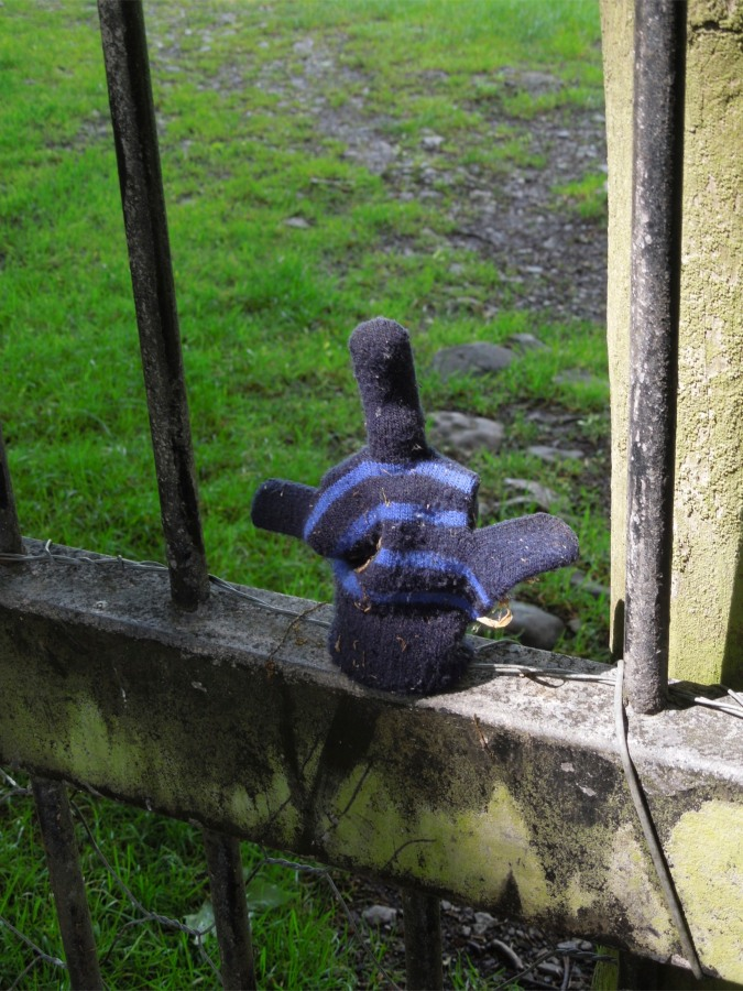 A lost glove made into an offensive gesture, Levens Park, Cumbria, England