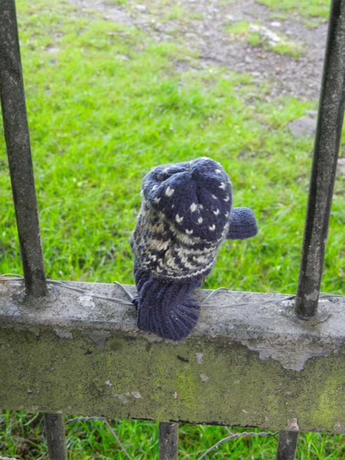 A lost mitten can't make an offensive gesture, Levens Park, Cumbria, England