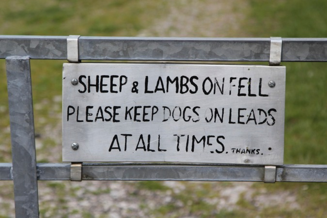 Farmer's sign, Farleton Knott, Cumbria, England