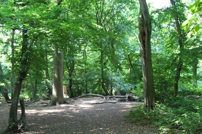 Highgate Wood, London, England