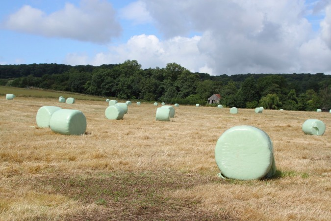 Silage bales on the Worcestershire Way, Worcester, England