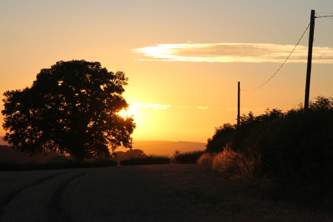 A summer sunset in Herefordshire, England