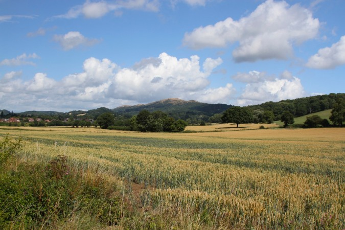 Countryside near Colwall, Herefordshire, England