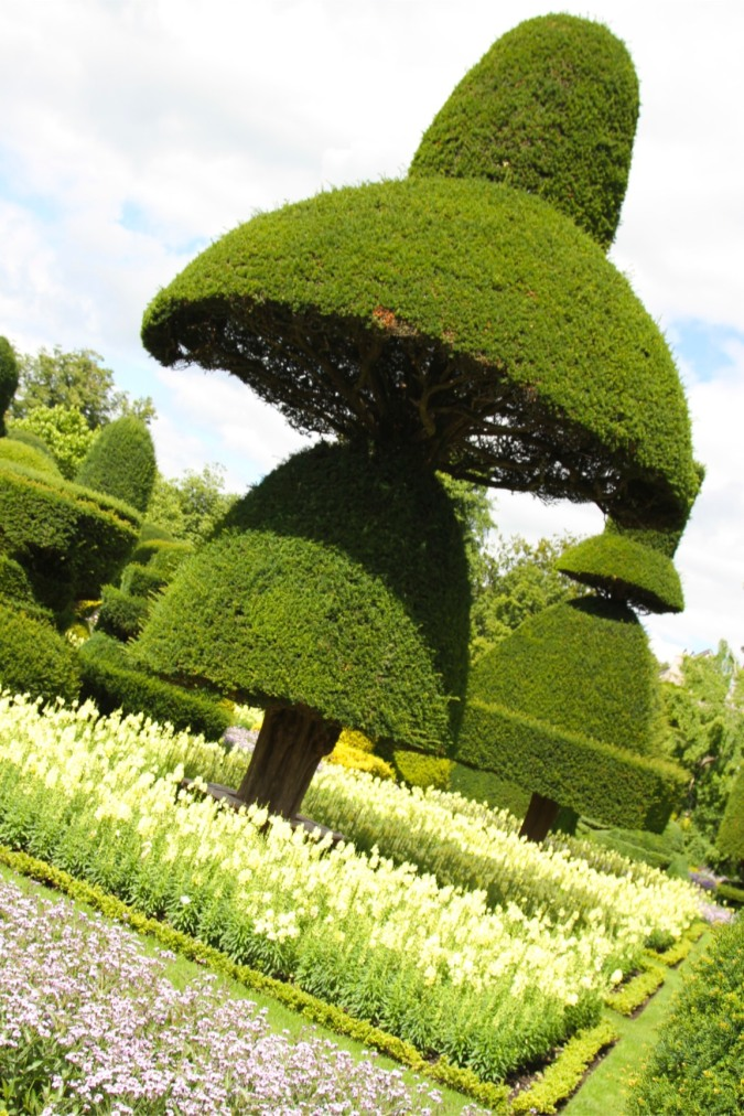 Topiary at Levens Hall, Levens, Cumbria, England