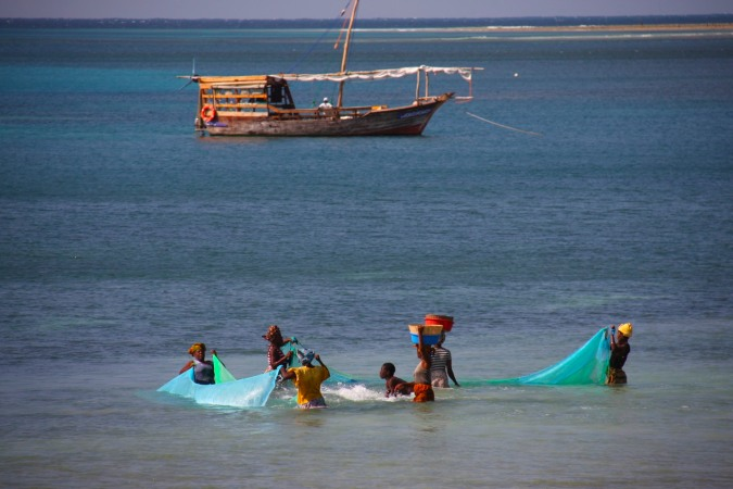 Women fish in the shallows, Pemba, Mozambique, Africa