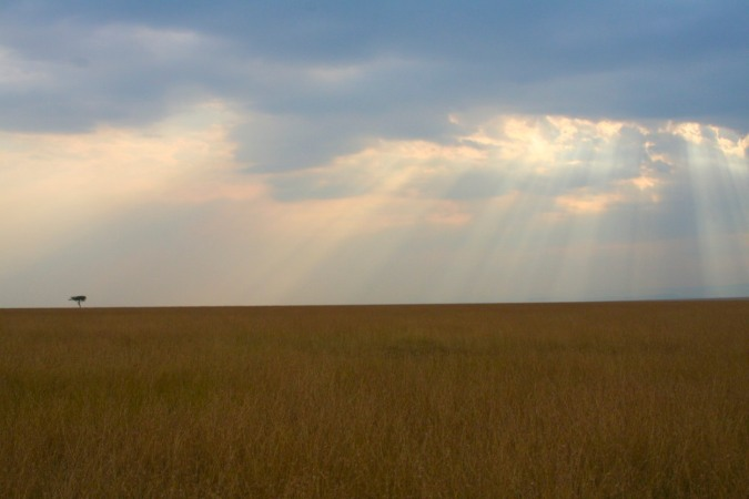 Sunset over the Maasai Mara National Reserve, Kenya, Africa