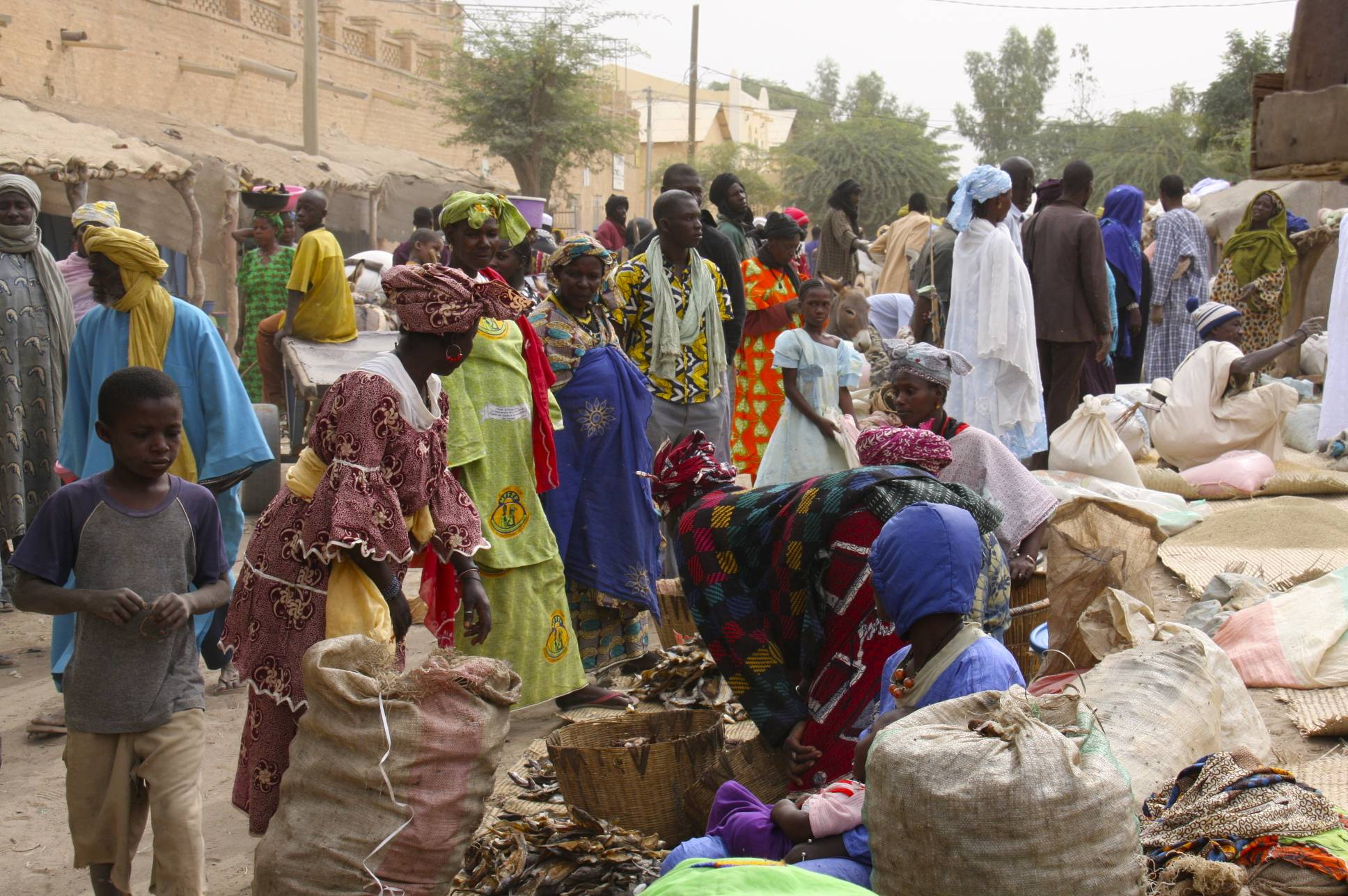 Timbuktu   notesfromcamelidcountry