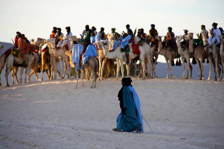 Tuareg preparing to race camels, Festival au Désert, Mali, Africa