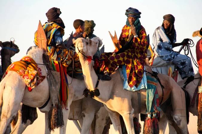 Tuareg on camels, Festival au Désert, Mali, Africa