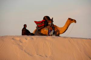 Woman and her son with camel at sunset, Sahara Desert, Mali, Africa