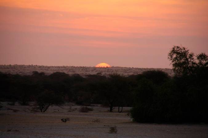 Sunrise over the desert, Sahara Desert, Mali, Africa