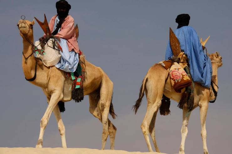 Tuareg on camels at the Festival au Désert, Mali, Africa
