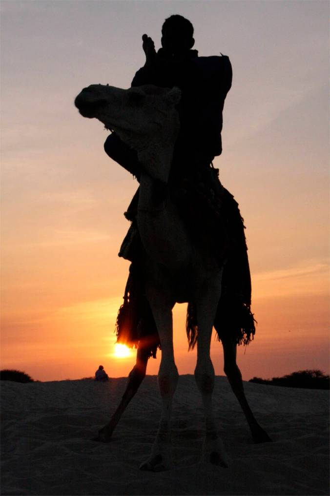 Tuareg and camel at sunset, Sahara Desert, Mali, Africa