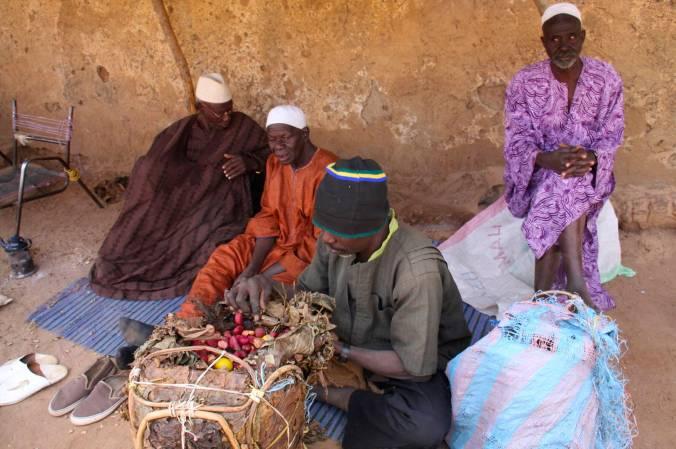 Cola nuts in Bandiagara, Dogon Country, Mali, Africa