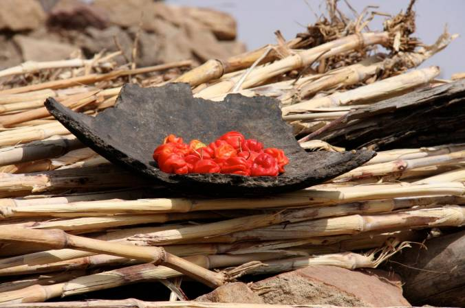 Drying chillies, Djiguibombo, Dogon Country, Mali, Africa