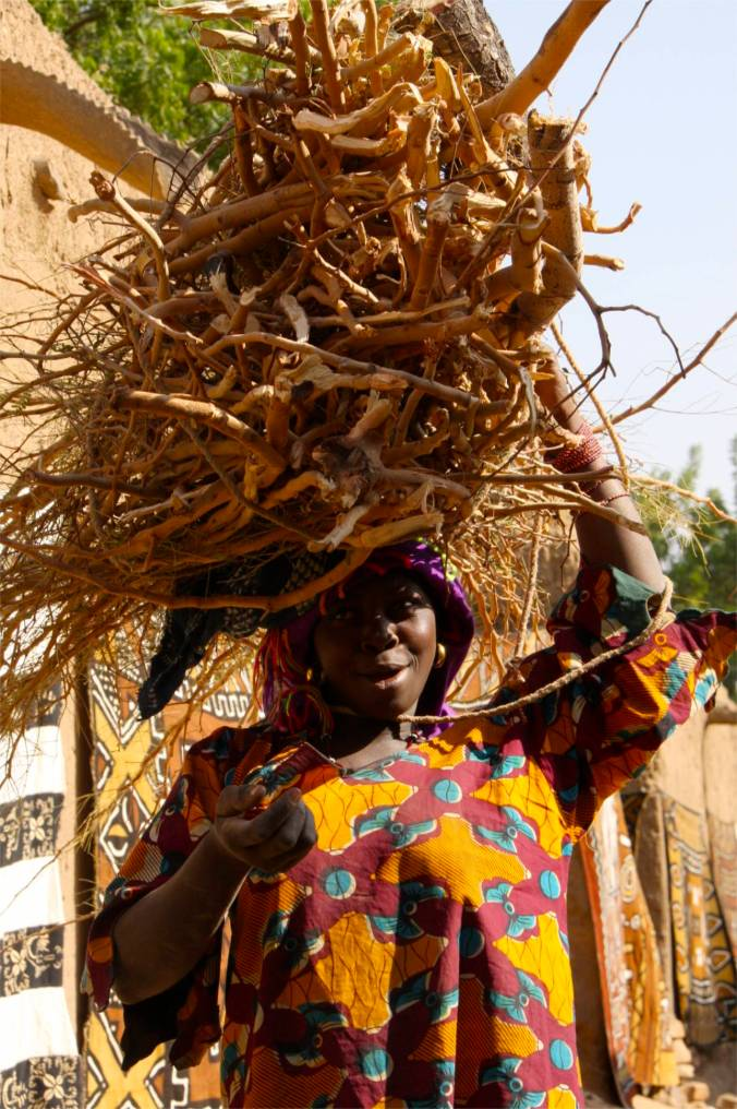Woman carrying fire wood, Enndé, Dogon Country, Mali, Africa