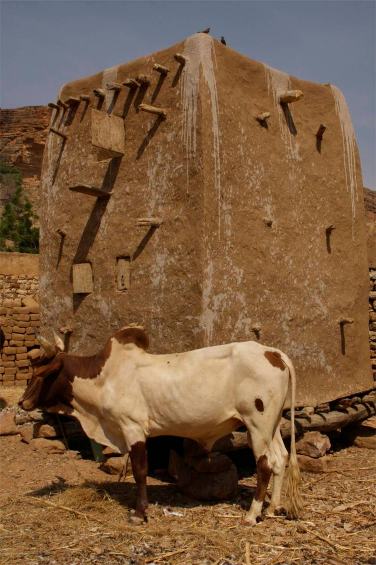 Traditional granary and cow, Enndé, Dogon Country, Mali, Africa